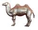 camel_vSMALL